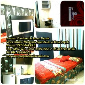 PhotoGrid_1459465404740